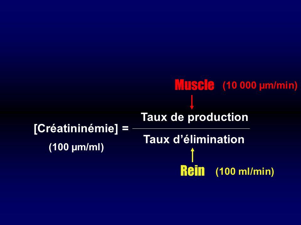 Muscle Rein Taux de production [Créatininémie] = Taux d'élimination